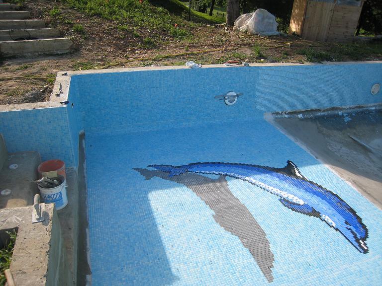 dauphin piscine