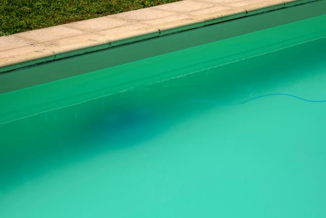 algues filamenteuses piscine